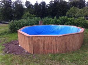 Как сделать бассейн дома