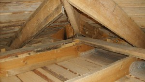 Как своими руками утеплить потолок бани керамзитом